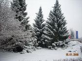 Más nieve en la Facultad de Educación