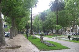 Avenida Sa Da Bandeira