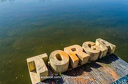 Homenagem a Torga, Coímbra