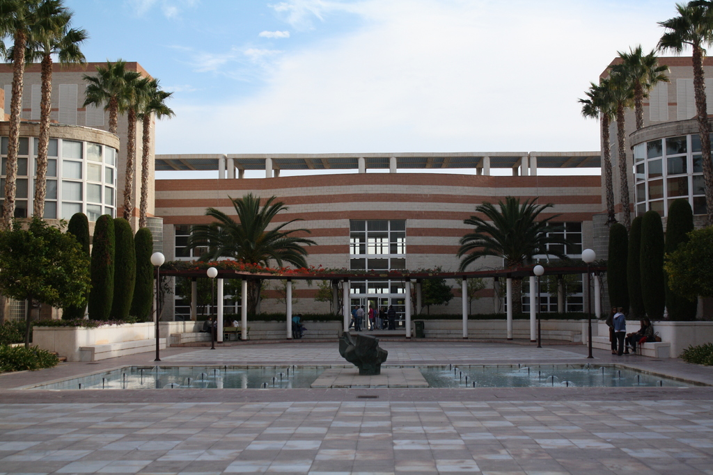 Universidad de alicante foto erasmus ua for Piscina universidad alicante