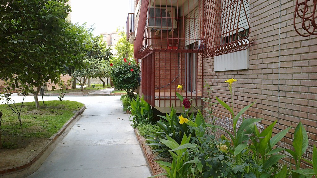 apartment in central Murcia,near the University, four bedrooms ...