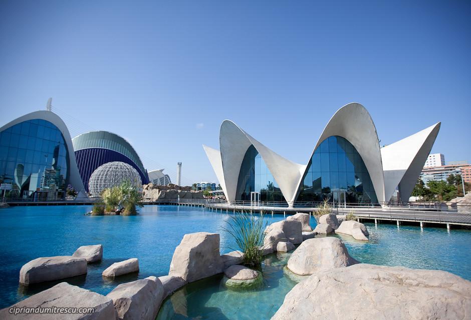 Cit des sciences quoi voir valence Entradas aquarium valencia