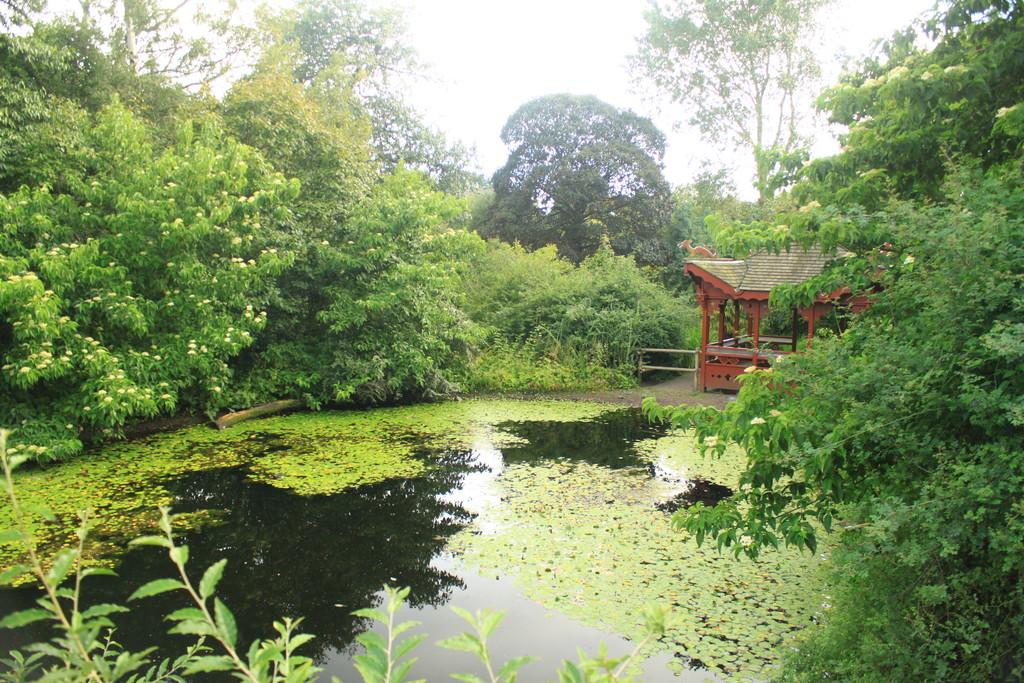 Botanic garden qu ver en edimburgo for Jardin botanico edimburgo