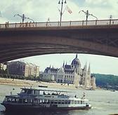 Margit hid, Parliament