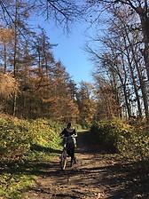 Reserva Natural Bourgoyen-Ossemeersen