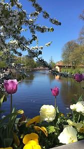 Río Fyris en la primavera