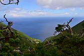 São Jorge Island, Açores