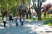 Universidad del BIO BIO