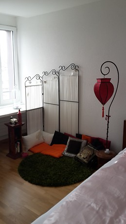 Alquiler alojamientos estudiantes lausana suiza for Chambre a louer renens