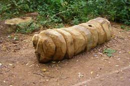 earthworm of the Moseley Bog