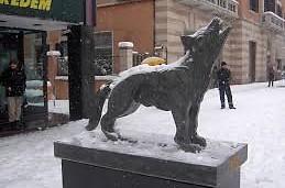 luppo (lobo) simbolo de cosenza