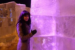 a maze of ice 2013