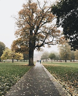 Outono a chegar a Odense
