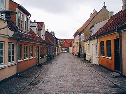 Rua de Odense