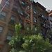1.Stanza in affitto nel cuore di Manhattan