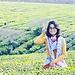 Thao Hoang