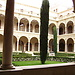 Experience at the University of Murcia, Spain by Luis