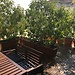 Lovely private single Room in apartment with terrace in Milan [Central area]