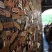 Muro della casa di Giulietta