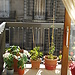 One bedroom to rent in Bordeaux city center