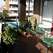 THREE CHARMING ROOMS NEAR CAMPUS COMPLUTENSE IN COMFORTABLE APT.