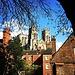 York Minster depuis les remparts