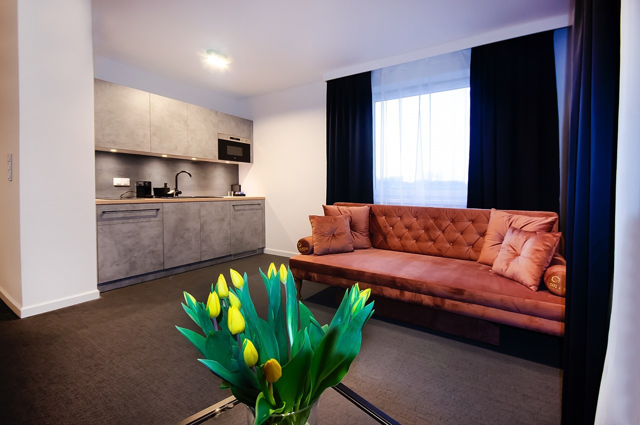The Apartment You Were Looking For In Katowice With Internet And With Elevator It S Just Nice And Gorgeous