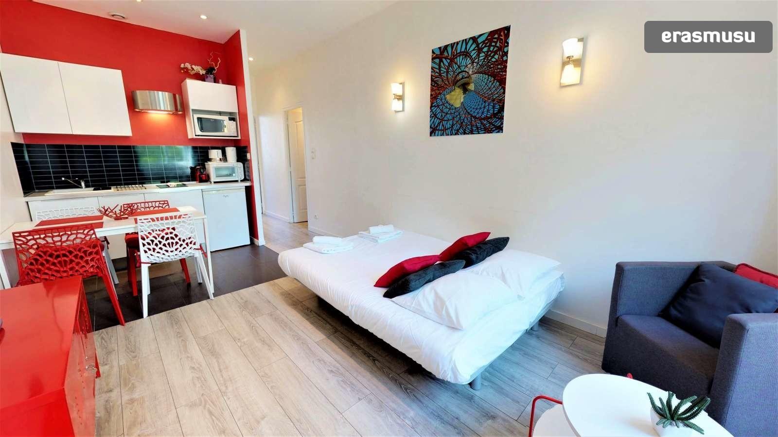 1-bedroom-apartment-rent-part-dieu-08063fec37aa524eb15825ea10825