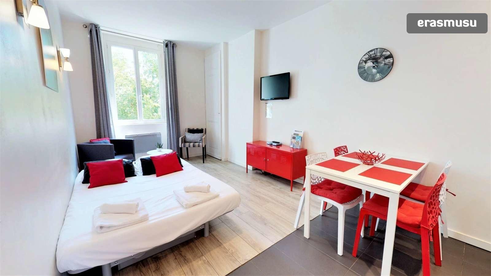 1-bedroom-apartment-rent-part-dieu-6fb30c5663842881fb32559b98fcc