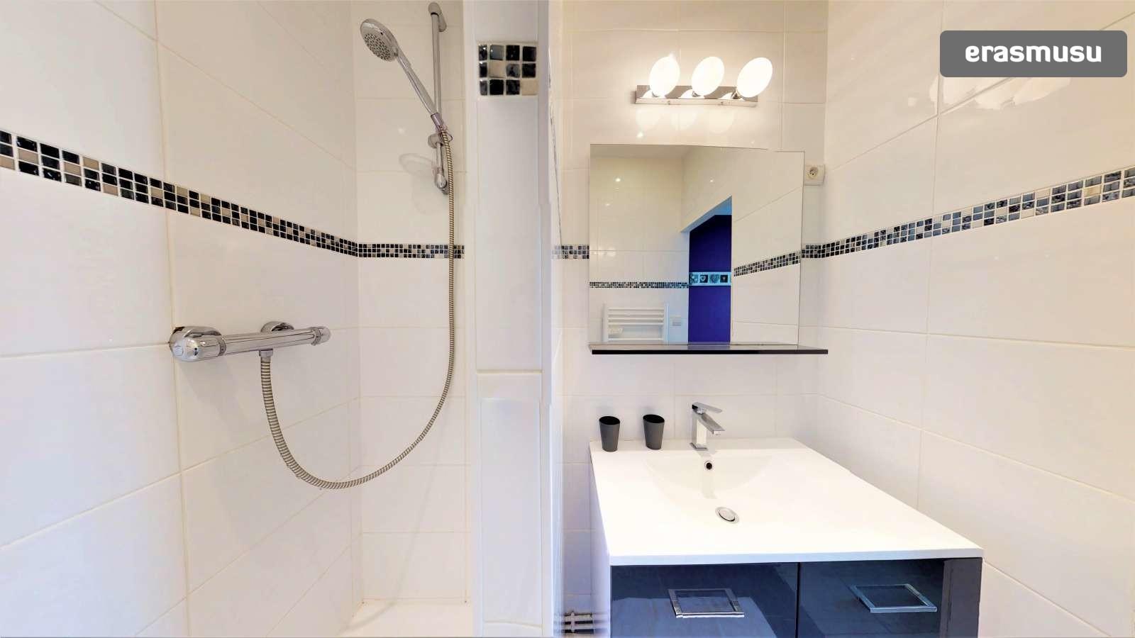 1-bedroom-apartment-rent-part-dieu-cc660a701c33bbd7748cd78e67a41