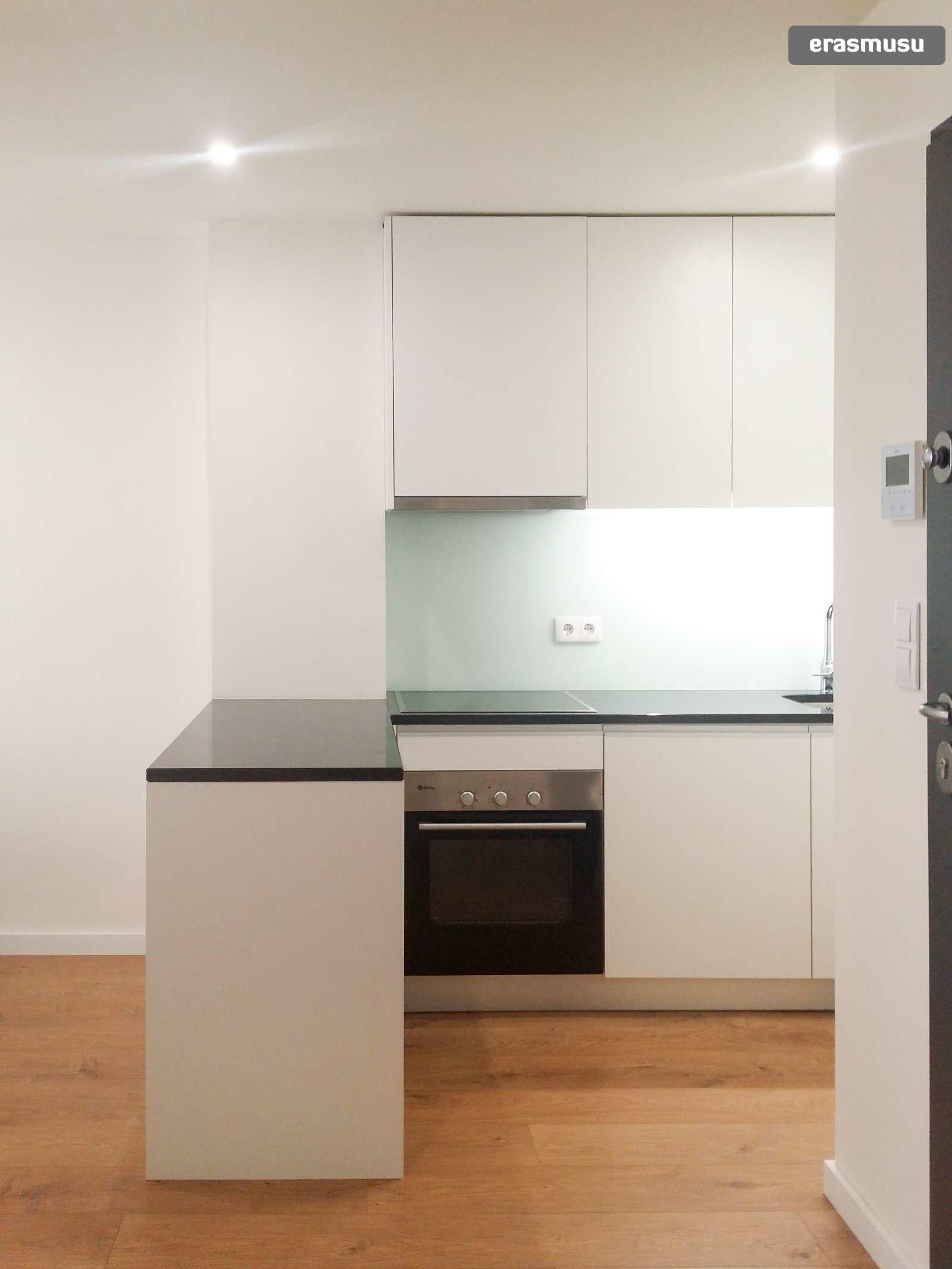 1-bedroom-apartment-rent-santo-ildefonso-e3b6ace94b27ecefc8e41eb