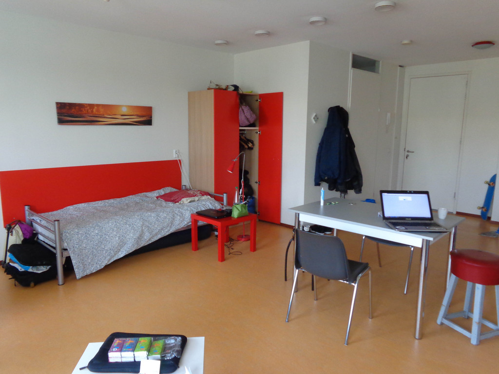 40m2 Studio In Amsterdam Science Park All Furnished Rent