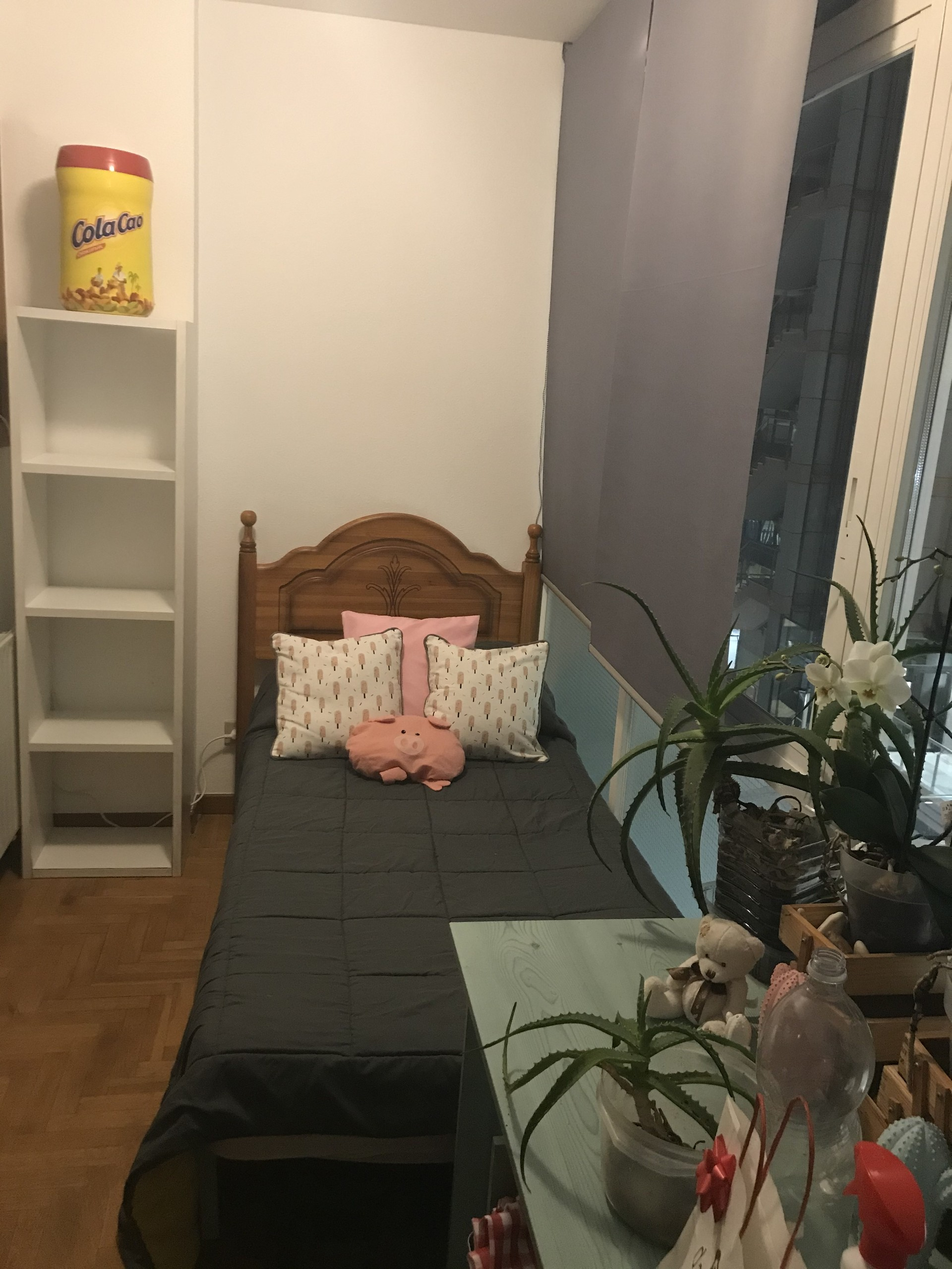 Bonita habitación en Santiago