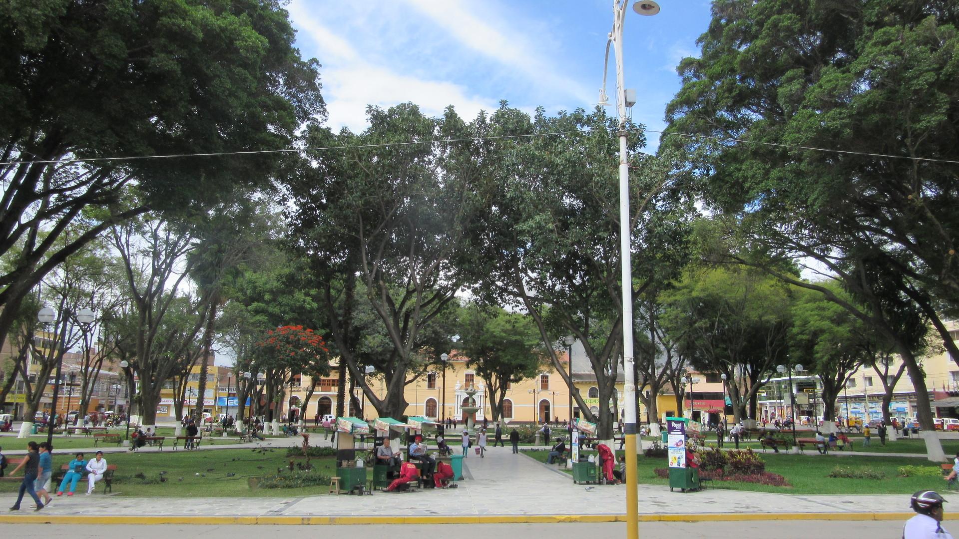 5-destinos-debes-visitar-rumbo-a-selva-c