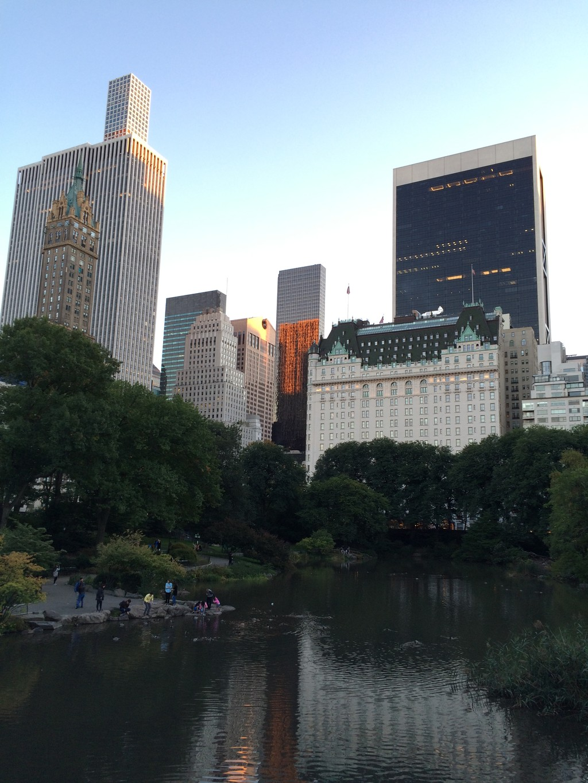 a-beautiful-green-park-heart-concrete-ju