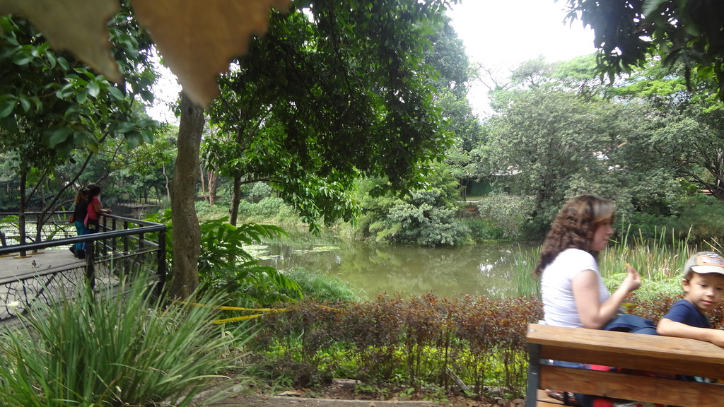 A quiet place to enjoy the surrounding nature
