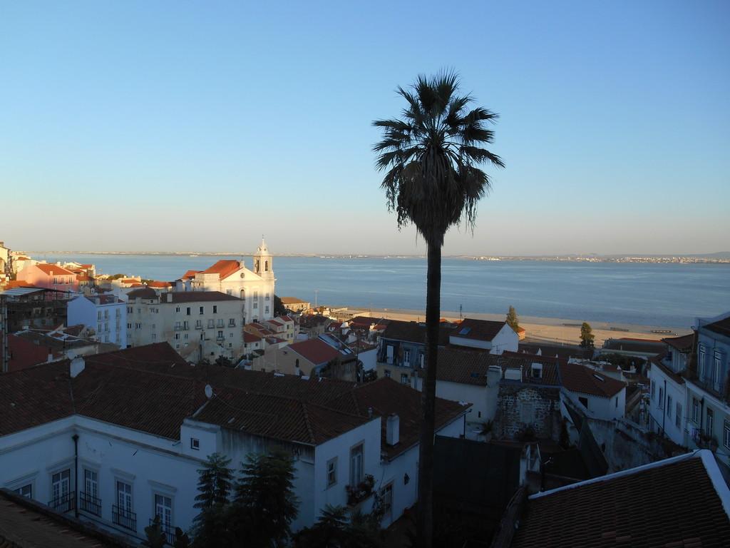 a-stunning-view-lisbon-rooftops-98cad609
