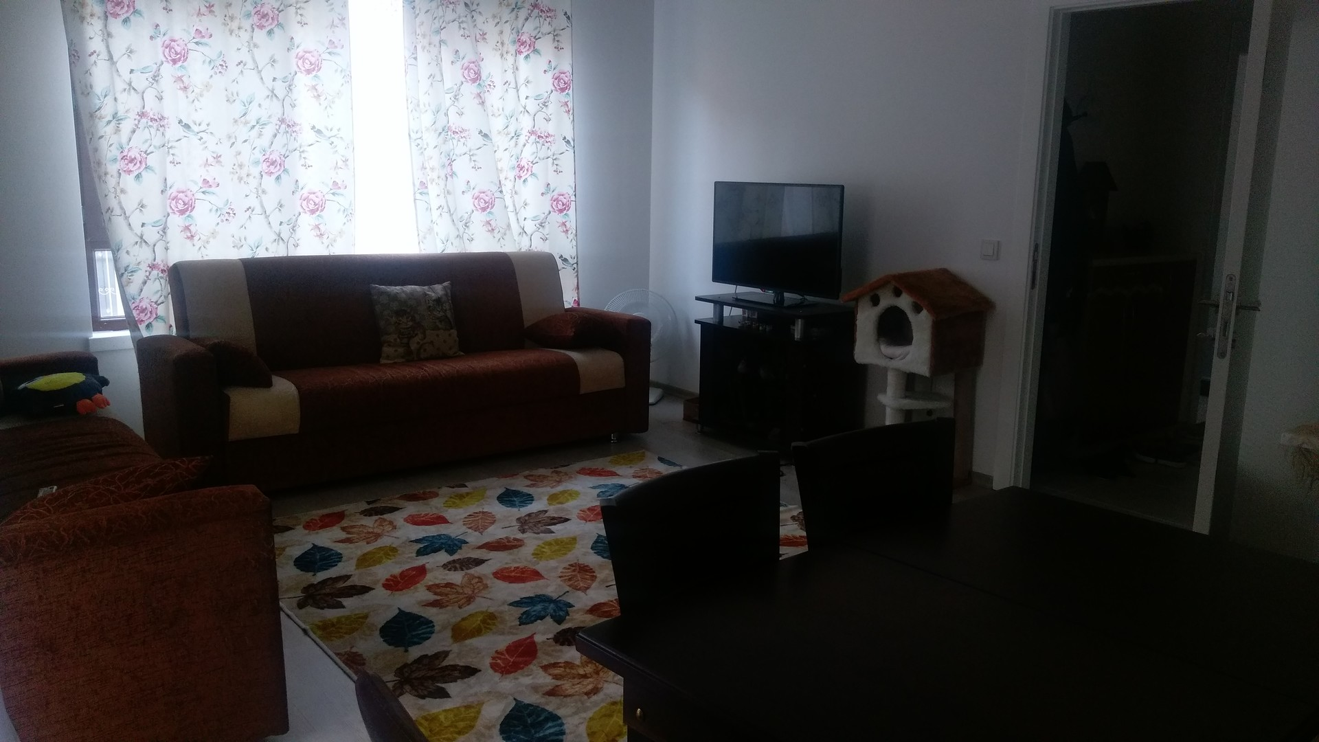 Looking For A Room To Rent In Ankara Turkey