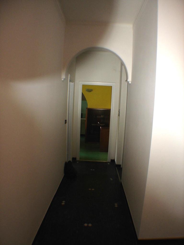 Affitto 5 ampie stanze luminose