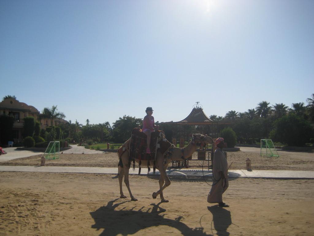 ali-baba-palace-29e8e86d3e5df2a3c3e8166c