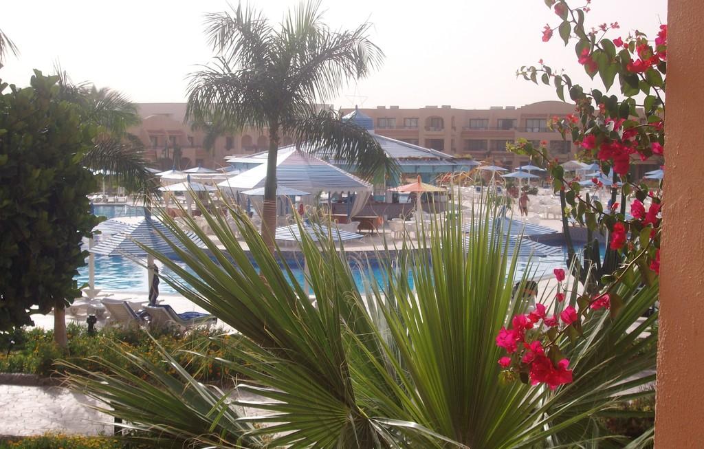 ali-baba-palace-c42a06481fa67d973b95d77e