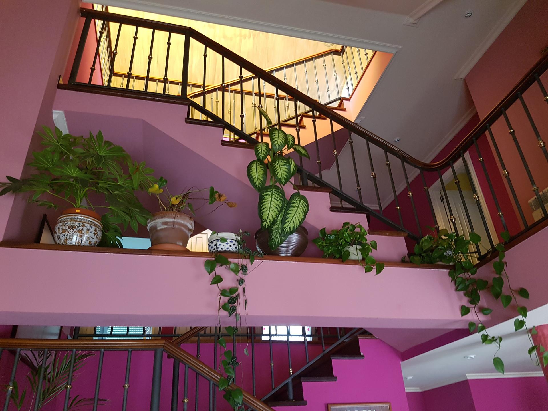 alojamiento-atico-casa-amplia-dispone-ha