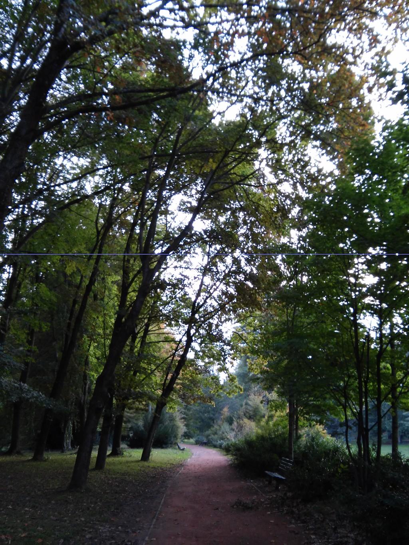 An enormous park: a symbol of the city of Lyon
