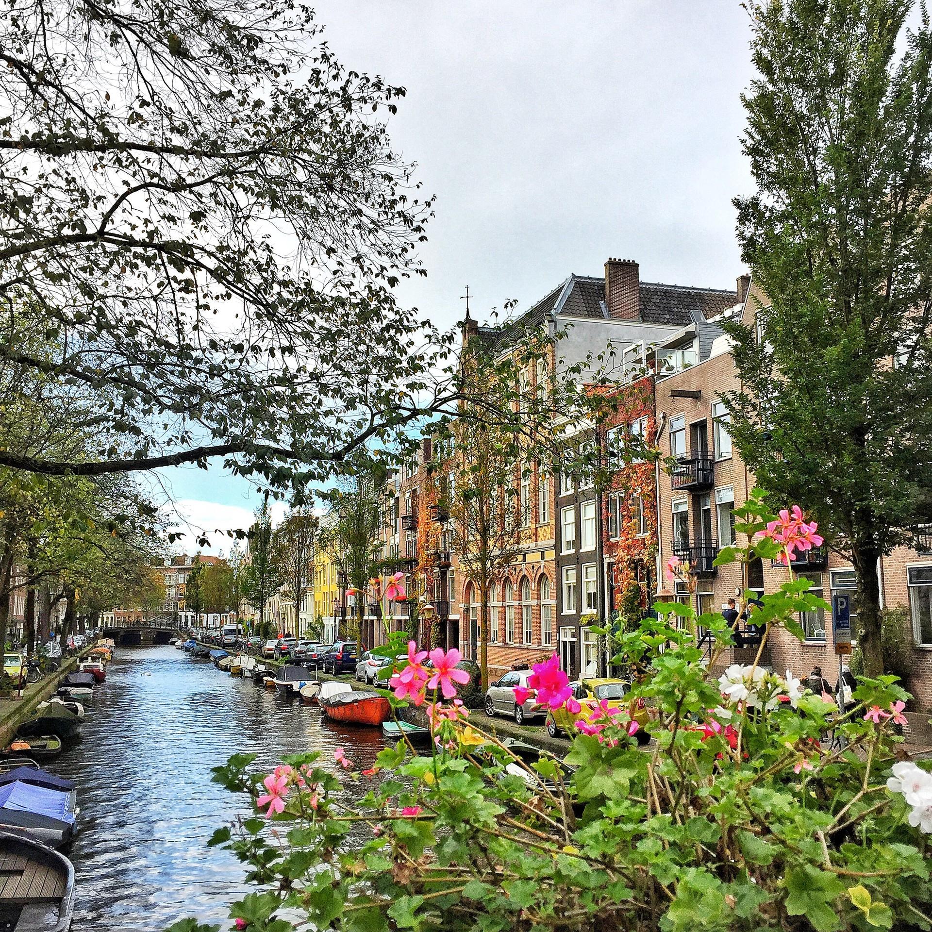 Arrivo ad Amsterdam e Piazza Dam