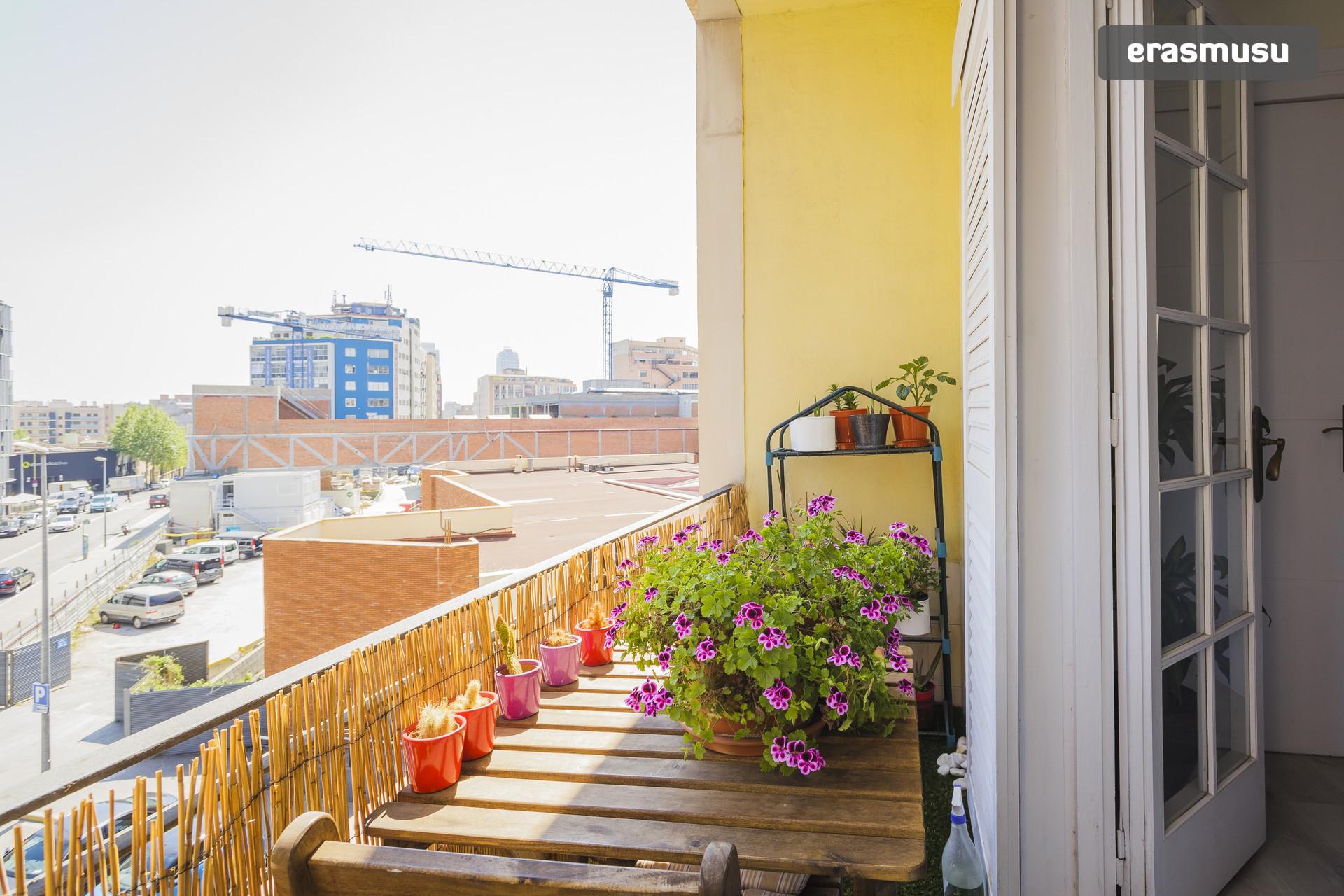 beautiful-sunny-single-room-fc3823e46007