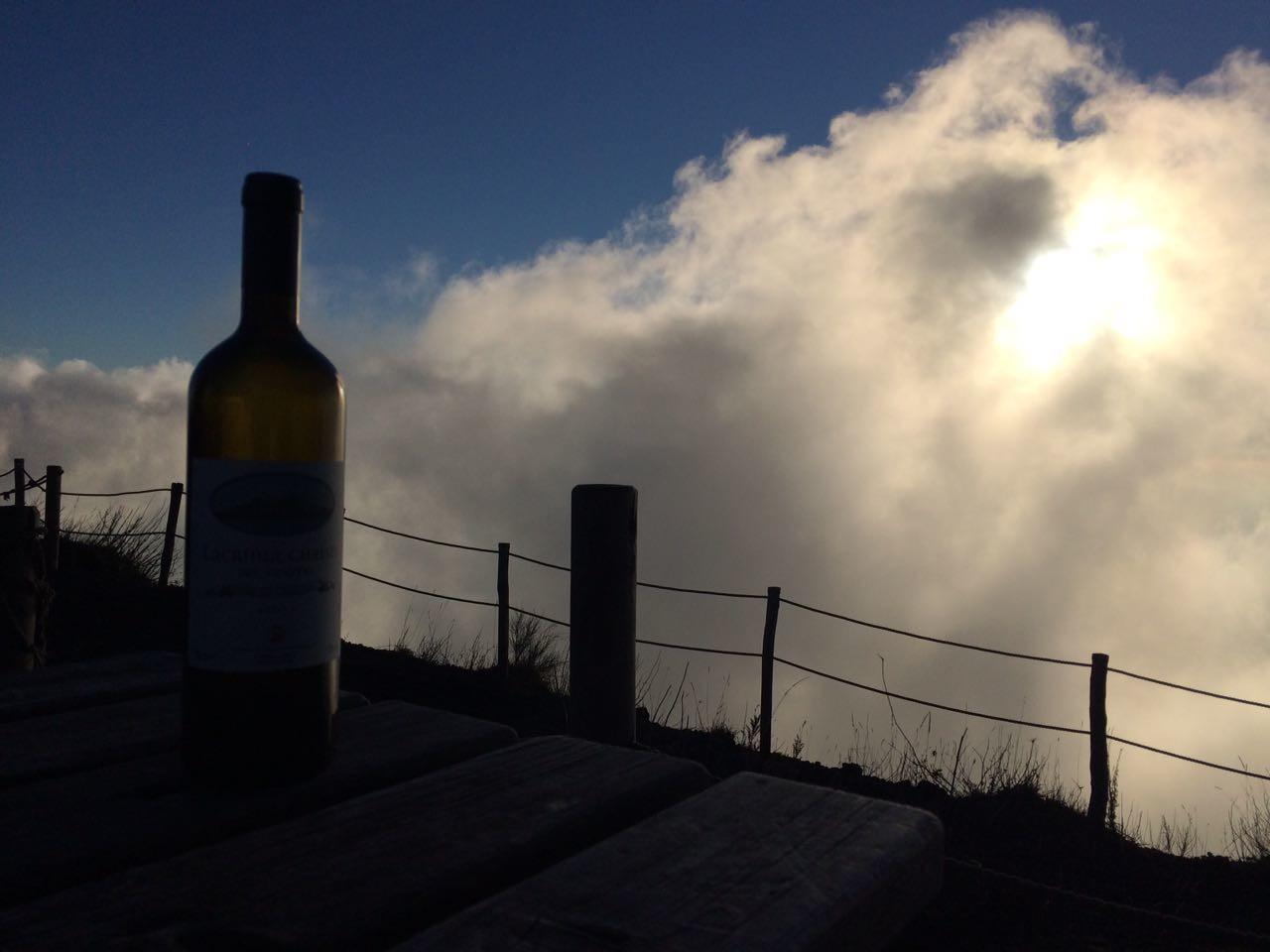 Best wines of Campania region