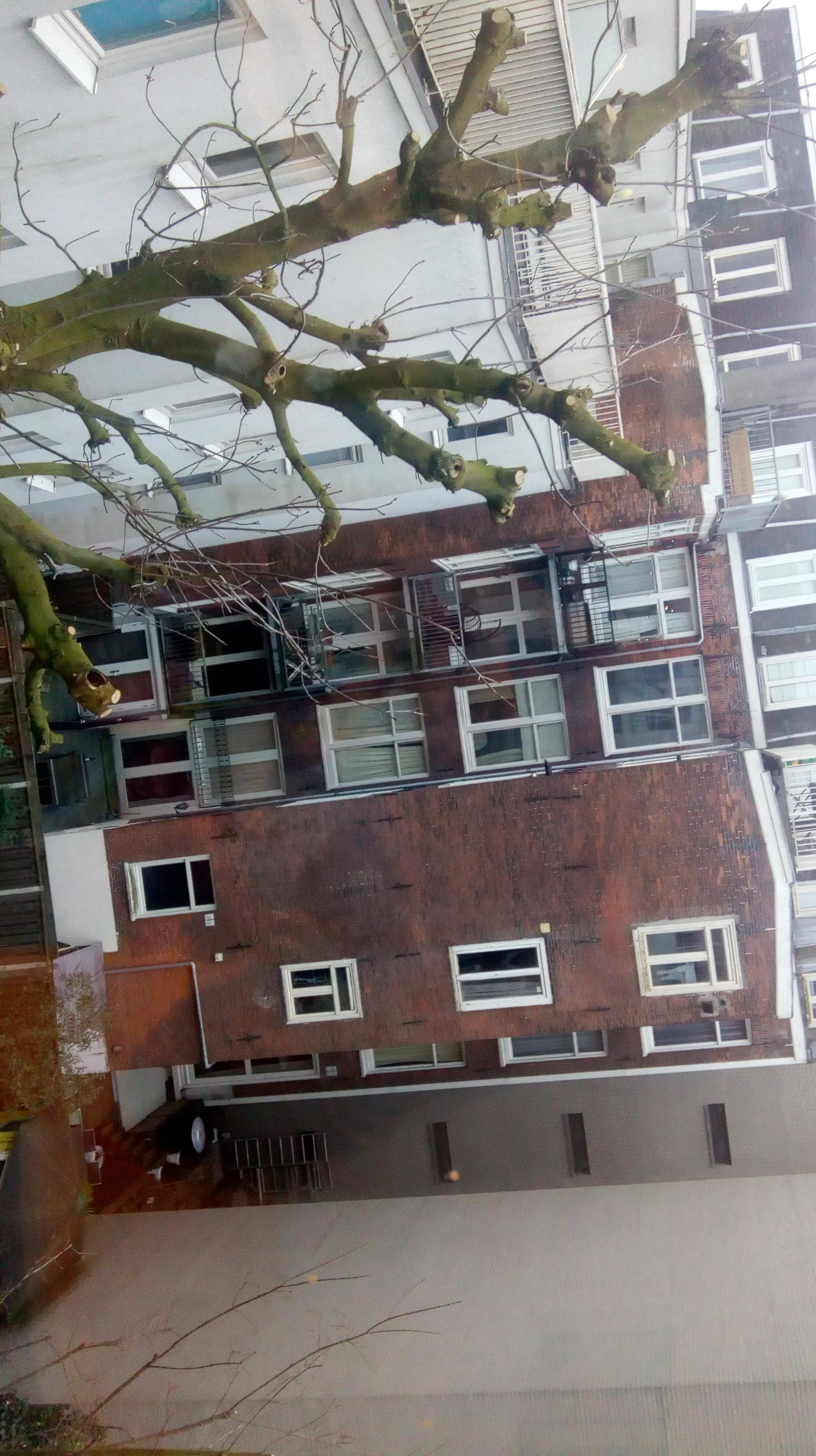 Big apartment to share in Amsterdam | Flat rent Amsterdam
