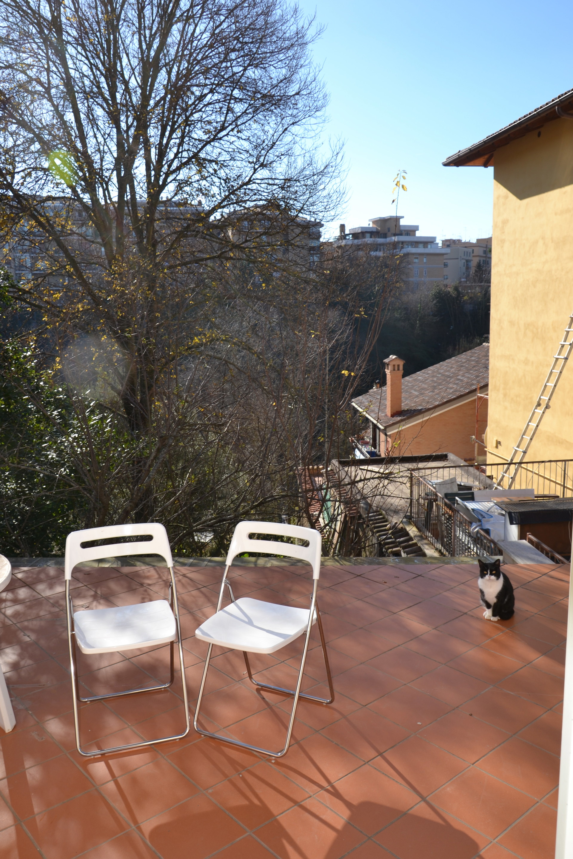Bedroom Apartment For Rent In Rome Pets Allowed