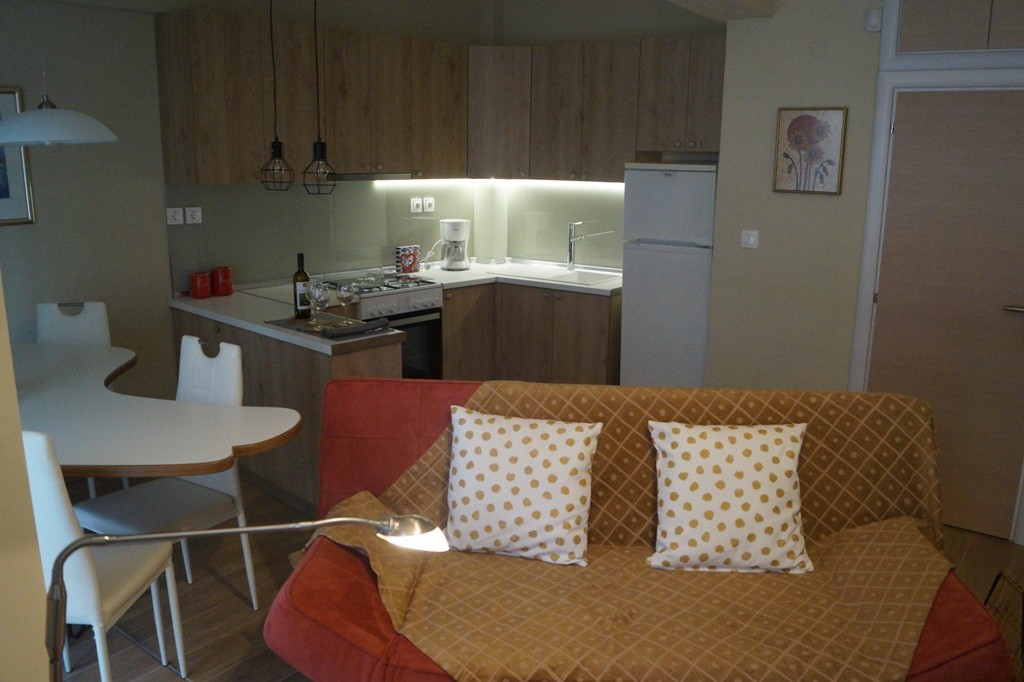 BOUTIQUE APARTMENT for rent near the University & the center
