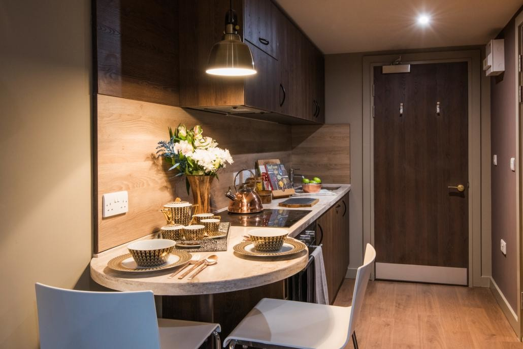 Brand new modern student apartment with access to a modern sky l